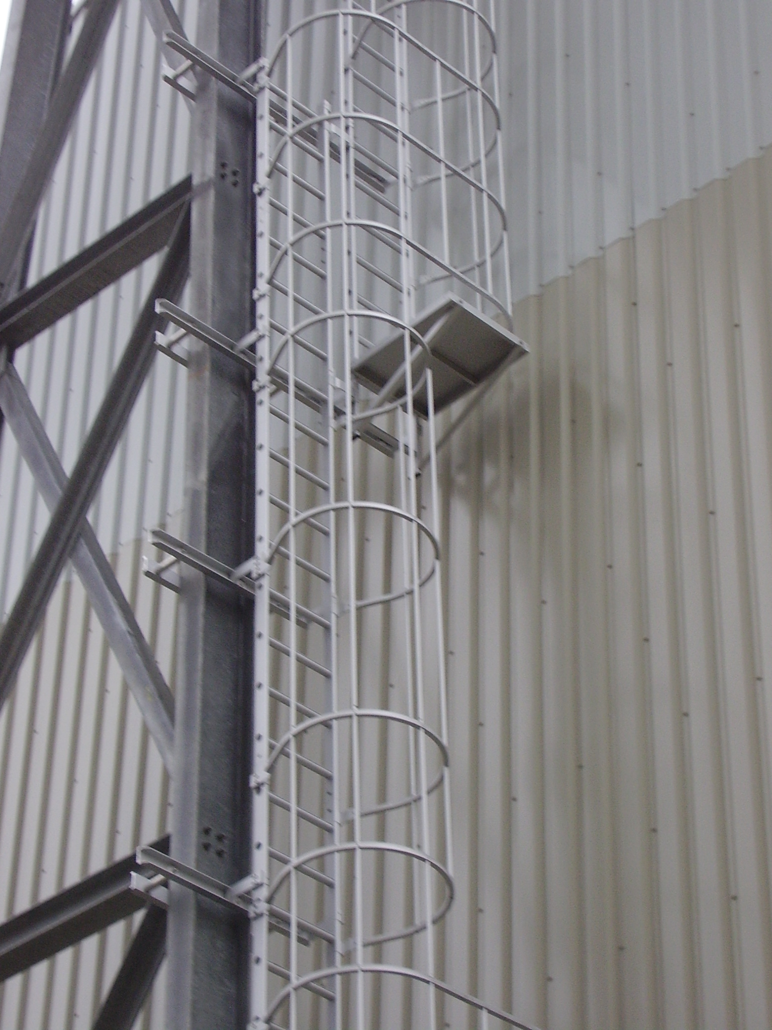 Flight between two cage ladders